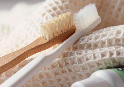 GCE_toothbrush20